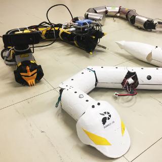 人間の手が届かない場所へと踏み込むヘビ型ロボット