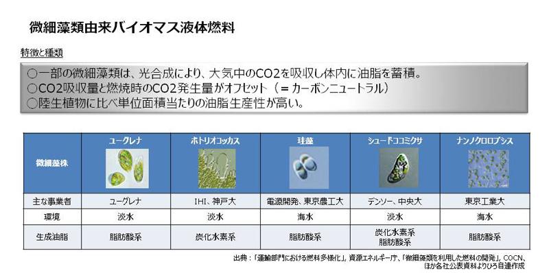 藻類 バイオ 燃料