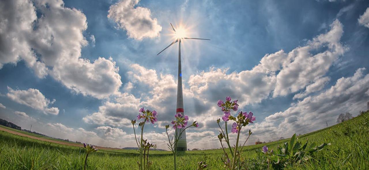 あらためて問われる「グリーンな電力」の意味