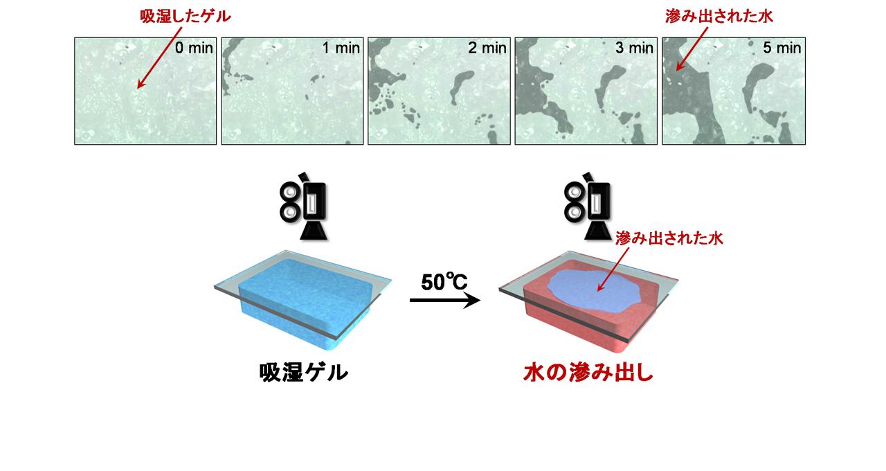 空気中の湿気を集めて水に変える省エネ材料「スマートゲル」を関西大学が開発