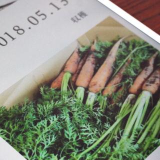 外食メニューの食材まで選べる!ブロックチェーンが可能にする農業の未来