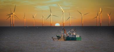 日本企業は世界と戦えるのか?「洋上風力発電」のポテンシャルとビジネスチャンス