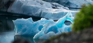 北の海にも春到来!オホーツク海の「流氷」が生き物にもたらしている恵みとは?