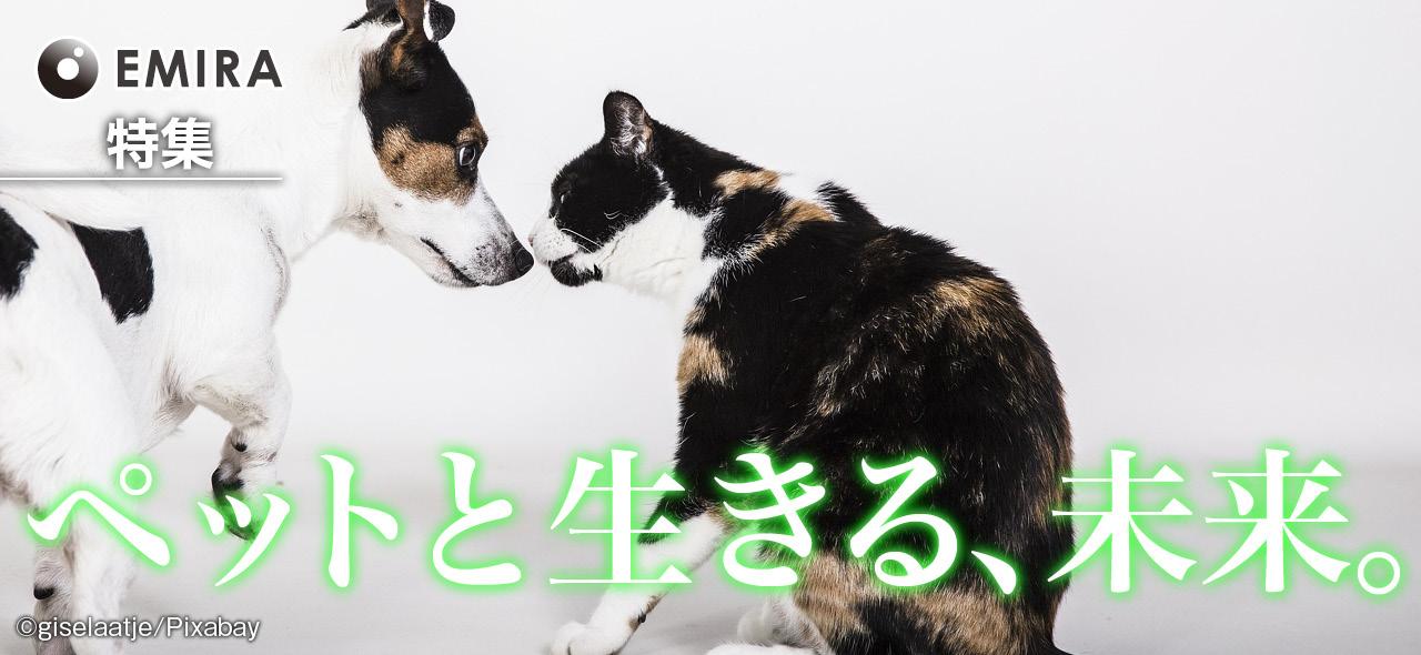 ペットと生きる、未来。~テクノロジーが犬・猫との暮らしにもたらす変化~