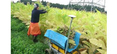 1台で複数機能! 小型ロボット「DONKEY」が解決する農業機械化の未来