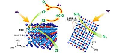 窒素ガスと海水、太陽光でアンモニアができる! 大阪大学大学院が光触媒新技術を開発