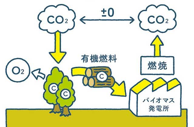 2050年脱炭素社会実現へ、カーボンニュートラルの歩み